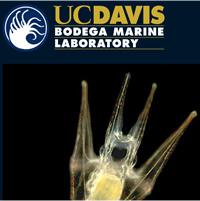ucdavis-gallery-thumb